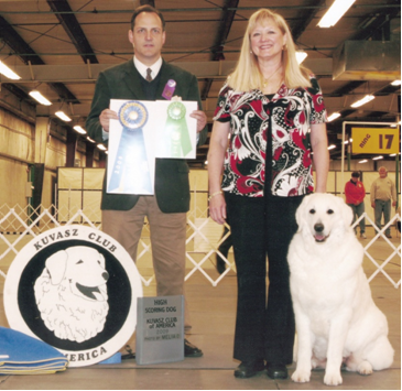 Westminster Dog Show Achievement Of Merit