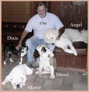 Dixie with Clay & other dogs 2